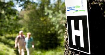 Wandern Hermannshöhen Teutoburger Wald