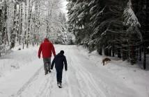 Wandern mit und Hund und Wildtieren