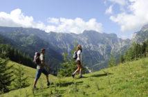 Achensee Wandern Steinöl Pertisau